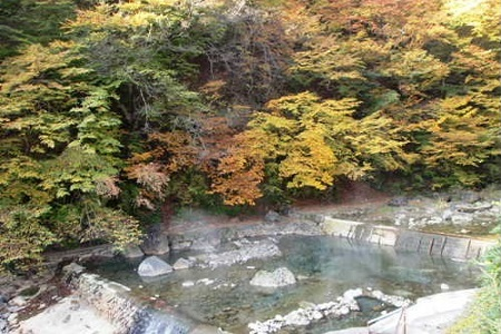 【秋】秋は水量が安定する季節の為、入浴される方も多いです。  全山紅葉に囲まれての露天風呂は最高です。