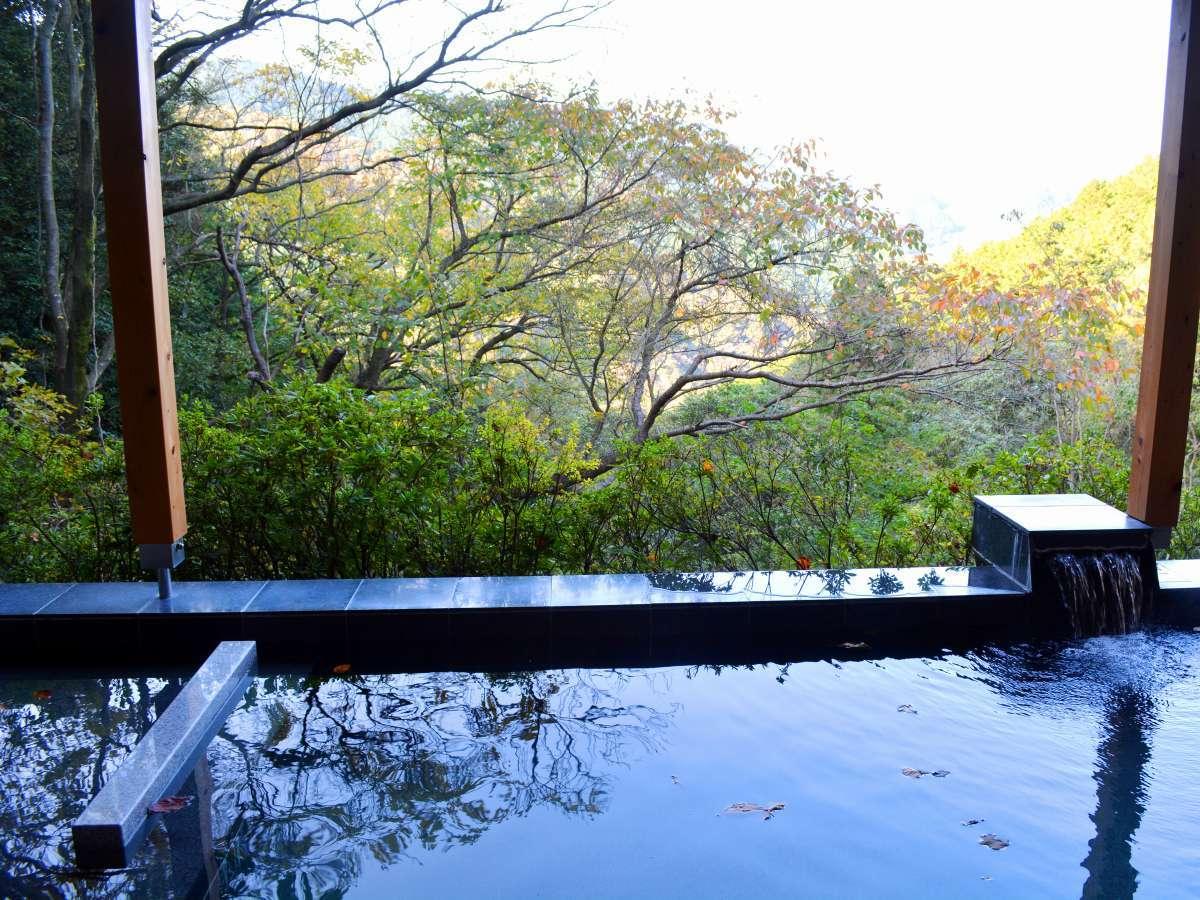 写真・フォトギャラリー|森の絶景露天風呂 熱海 森の温泉 ...
