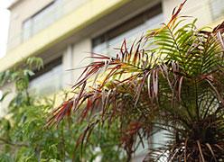 西浦温泉 和のリゾート はづ:イメージ