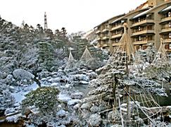 日本庭園「水月園」