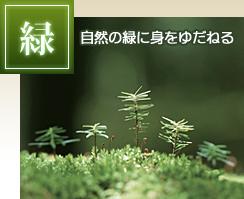 緑-自然の緑に身をゆだねる