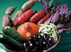 写真:加賀野菜イメージ