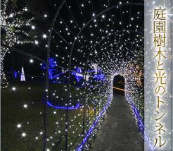 イルミナスオーシャン庭園樹木と光のトンネル