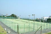 写真:テニス