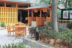 写真:木陰の広場