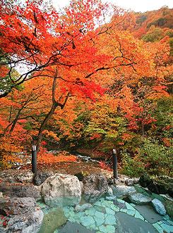 写真:露天風呂 紅葉のころ