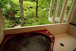 写真:夏の花見館 ジャグジー風呂