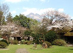 写真:春の庭