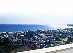 写真:マホロバ・マインズ三浦 眺望