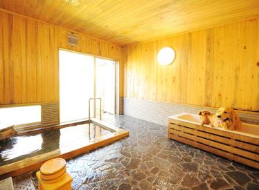 写真:個室内風呂(わんちゃん専用風呂付)