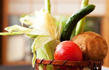 写真:採れたて野菜