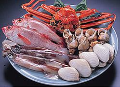 写真:魚貝類