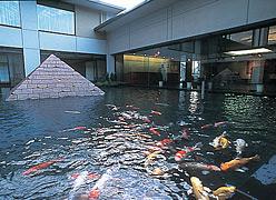 リゾートホテル ラフォーレ伊東:館内池