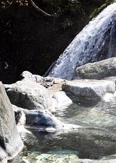 写真:露天風呂「百景花」