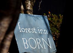 forest inn BORN:イメージ