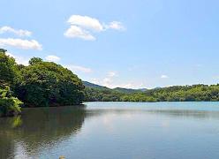写真:アンダの森 伊豆いっぺき湖 ジム