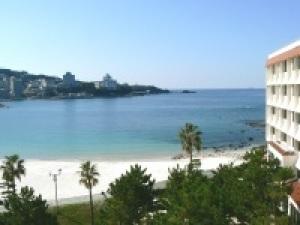 【基本1泊2食】オーシャンビュー&山海の幸を味わう「咲会席」<食事処>