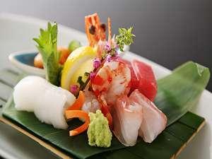 【新鮮魚介コース】美味しい海の幸を大満喫♪
