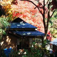 奥多摩 松乃温泉 水香園