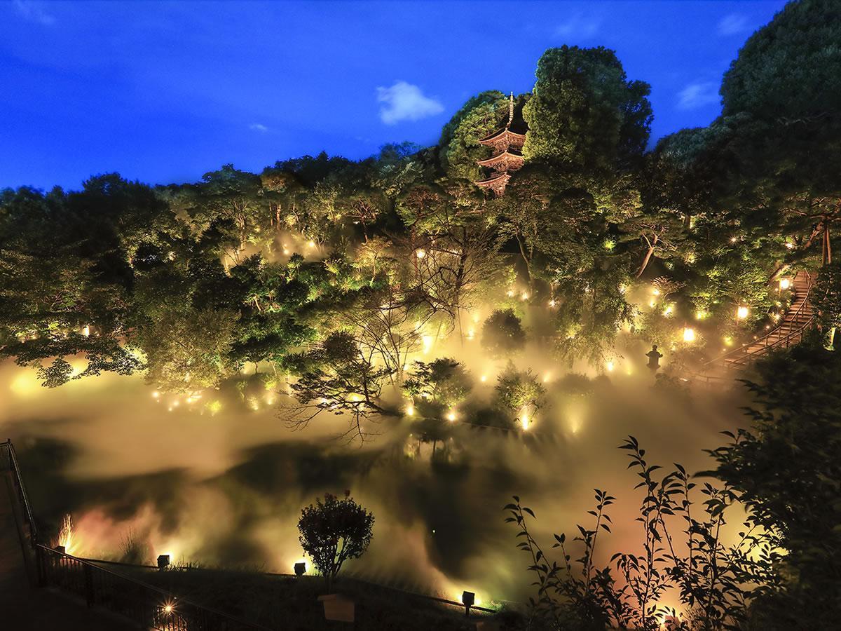 東京雲海&千の光のライトアップを愉しむガーデンビュー(雲海ケーキセット&朝食付き)