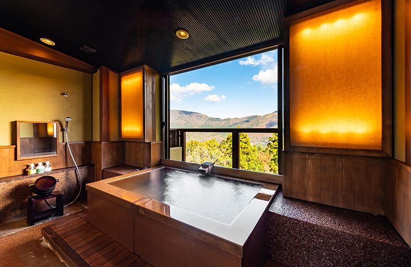 特別室「金時」源泉かけ流しの半露天風呂付和洋室 (70平米)