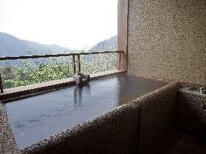 本館「箱根」 源泉かけ流しの半露天風呂付和洋室 (54平米)