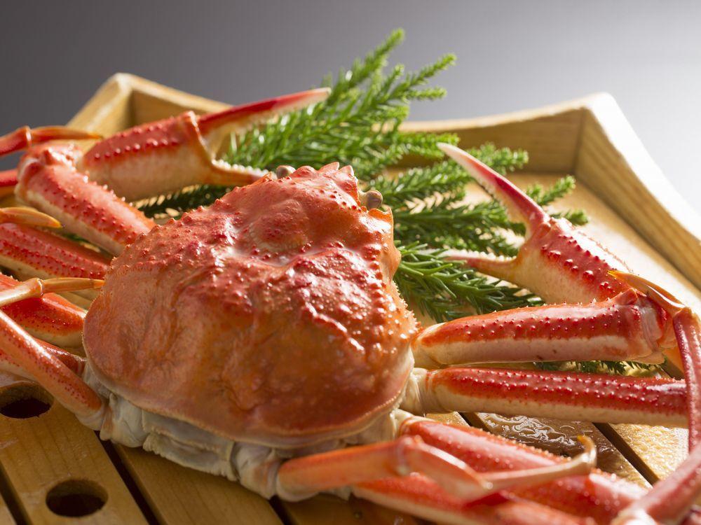 【蟹づくし会席】絶品蟹フルコース☆蟹2杯以上使用の贅沢蟹づくし会席!~広間食~