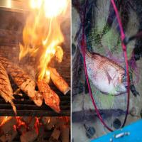 【夕食グレードUP】★海の生簀★鮮度抜群魚介類と地中海料理(メイン:肉料理&海の生簀)プラン(禁煙)