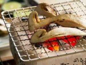 【9月・10月限定】食欲の秋!贅沢グルメ旅★夜は松茸3品×神戸牛しゃぶしゃぶ!朝はステーキで大満足♪
