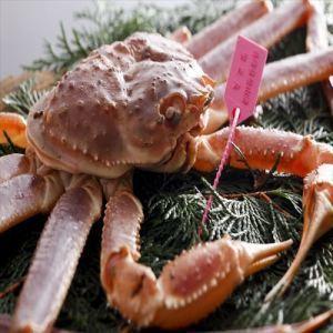 【11月25日~2月24日 期間限定】冬の味覚を愉しむ~タグ付き蟹コース~