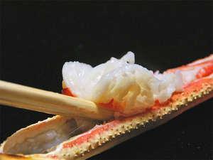 【冬】ボリューム満点♪せこ蟹付き【特選かにフルコース】