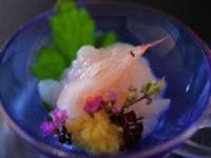 【富山湾の希少】富山湾でしか獲れない白えびを堪能する延楽「白えび会席プラン」