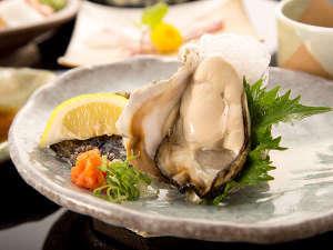 【夏季限定!丹後岩牡蠣】ミルキーな岩牡蠣と丹後の鮮魚を食する!