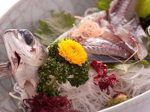 地どれ厚切りお刺身が自慢です! お魚を楽しみ尽くす【お魚満腹プラン】まるやす人気No2プラン!