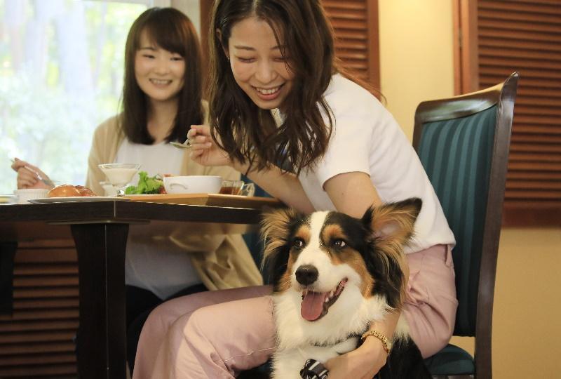 ゆとりろ蓼科ホテルwith DOGS