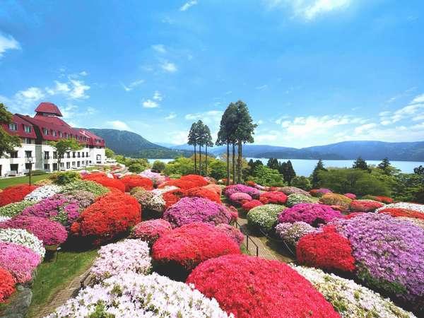 写真:小田急 山のホテル