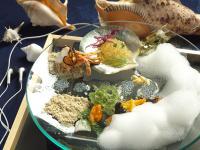 写真:海老とすっぽんの岬宿 ニューいらご