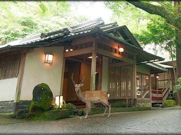 写真:奈良・春日奥山 月日亭