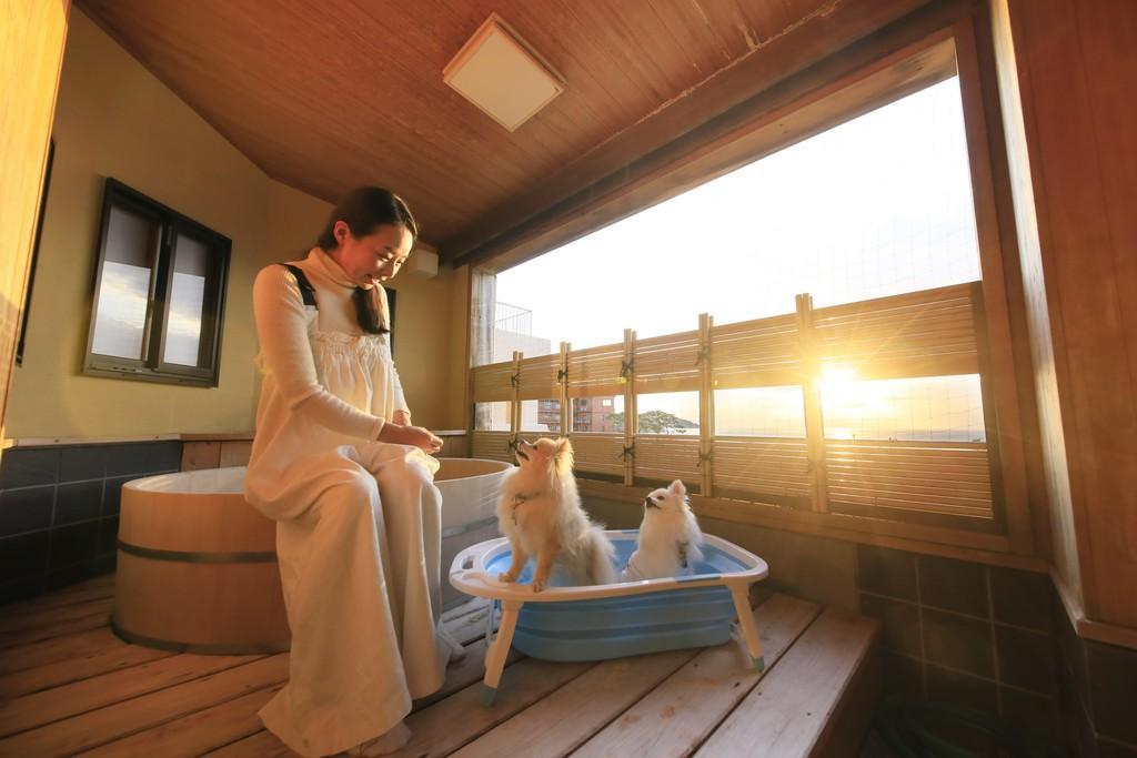 愛犬と泊まれる温泉宿 ゆるり西伊豆